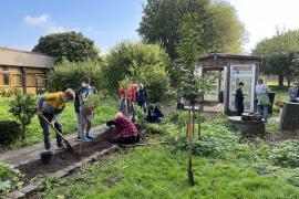 Gartenarbeit-im-Schulgarten